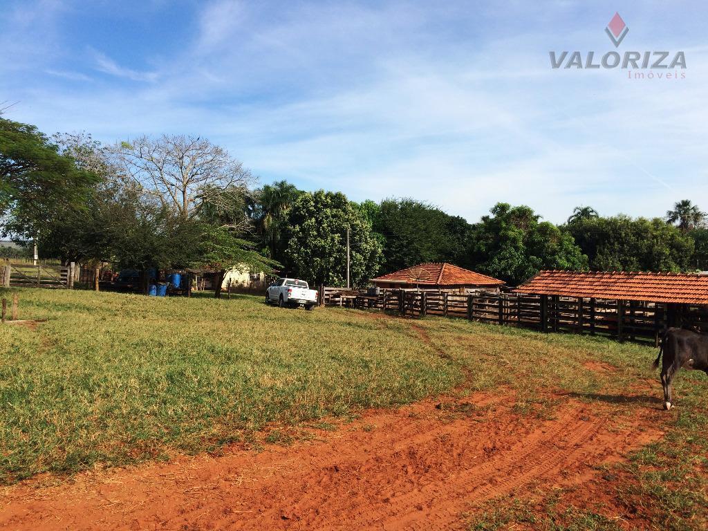 Fazenda 23,5 Alqueires, Zona Rural, Cachoeira Alta.