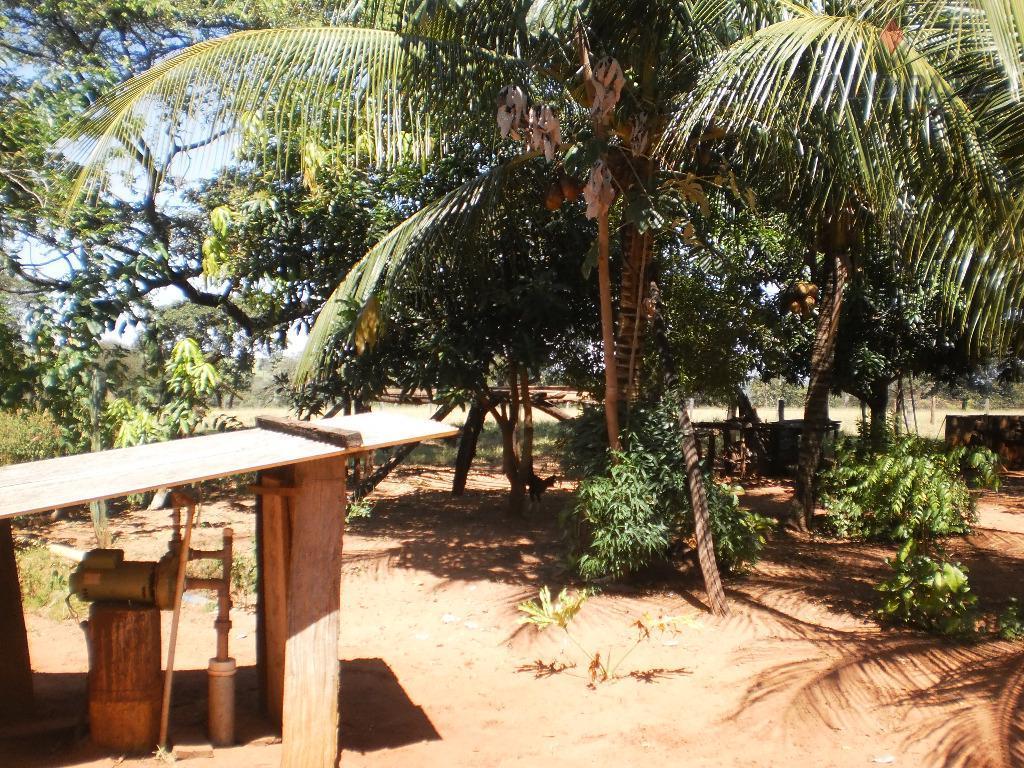sítio de 11 alqueires (53,24 hectares) 06 divisões de pastos, toda formada, córrego, roda dagua, bebedouros,...