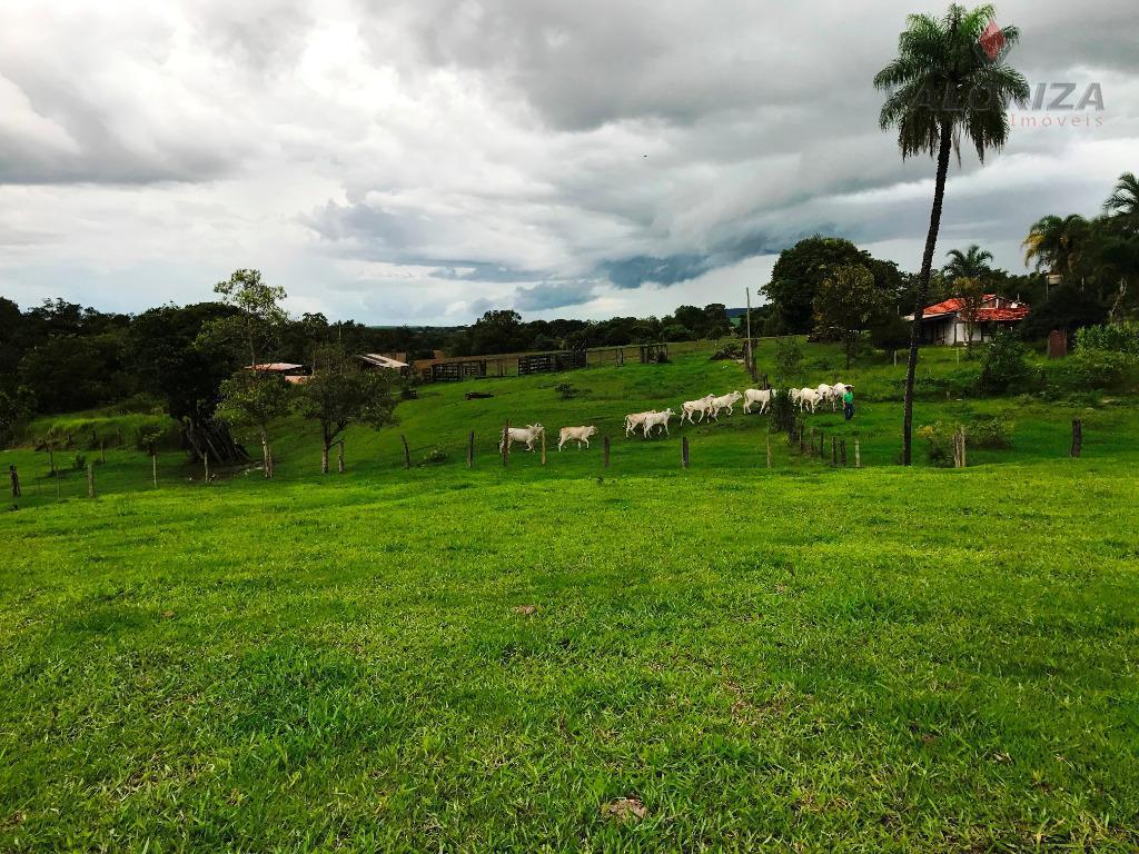 08 Alqueires para venda e locação, Zona Rural, Quirinópolis.