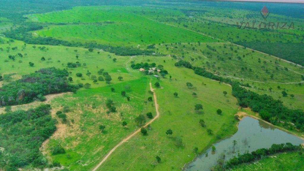 Fazenda à venda, Torixoréu-MT