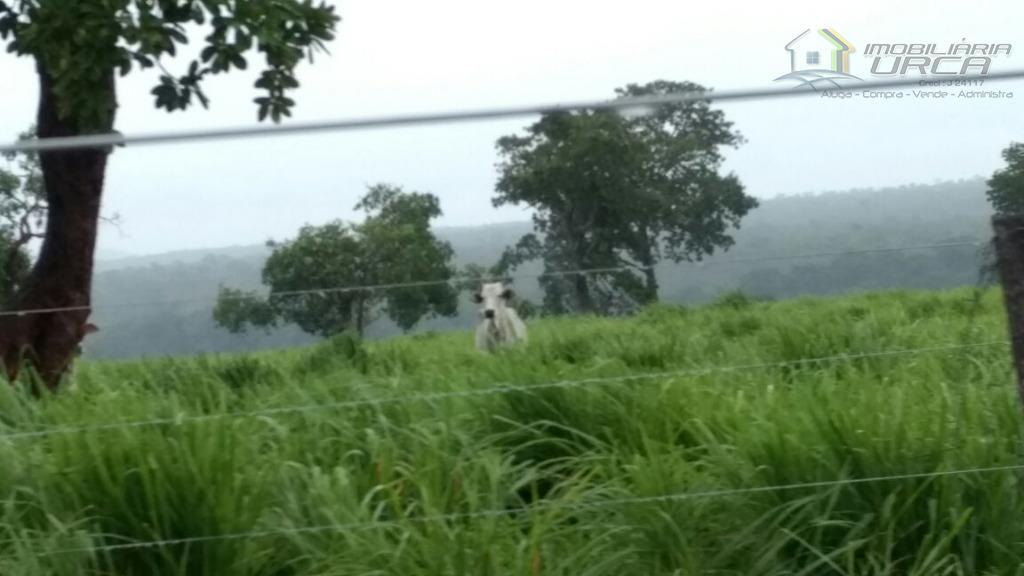 Fazenda rural à venda, Centro, Nova Xavantina.