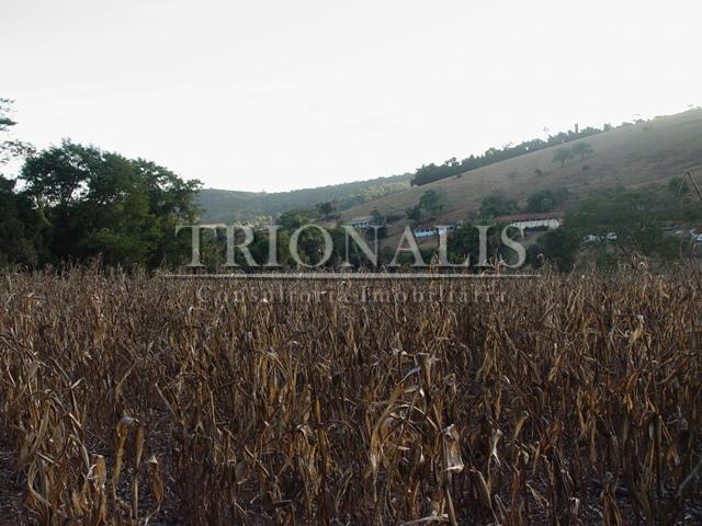 Sítio  rural à venda, Caetetuba, Atibaia.