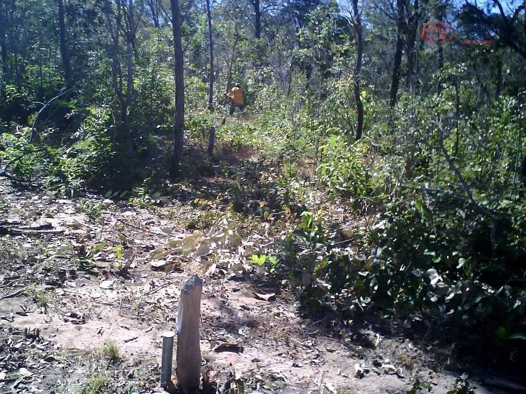 fazenda com 1.289,5854 ha, toda documentada e com estudo feito de solo e vegetação.