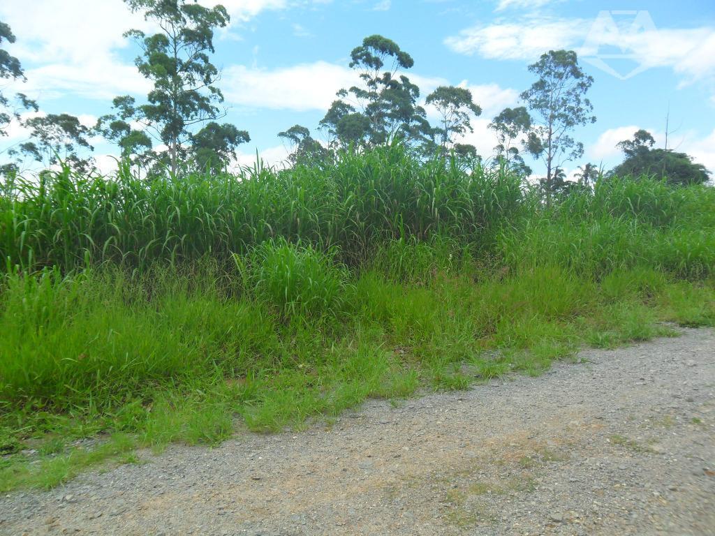 Terreno residencial à venda, Jardim Ana Cristina (Caucaia do Alto), Cotia.