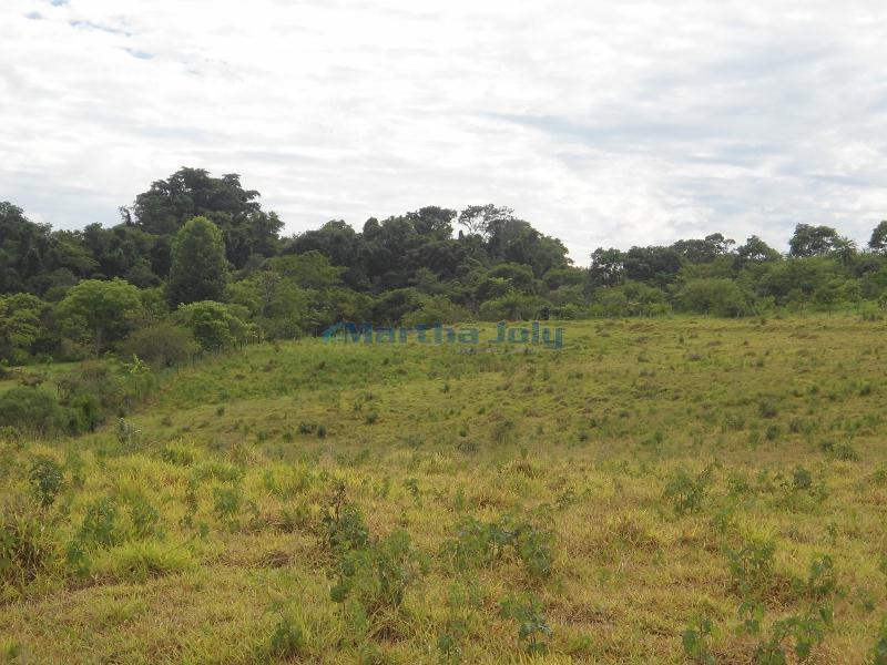 Terreno Rural à venda, Três Pontes, Campinas - TE0155.