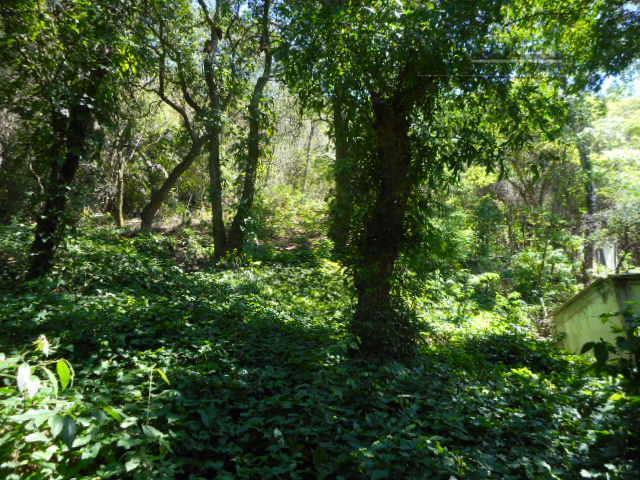 oportunidade única! belíssimo terreno em aclive suave no bairro da freguesia, composto de uma área total...
