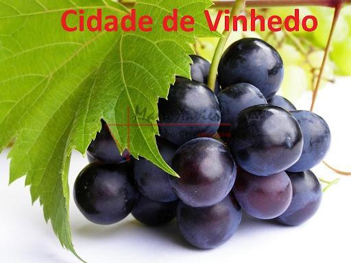CIDADE DE VINHEDO / SP