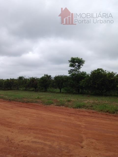 Sítio  rural à venda, Zona Rural, Martinho Prado Júnior.
