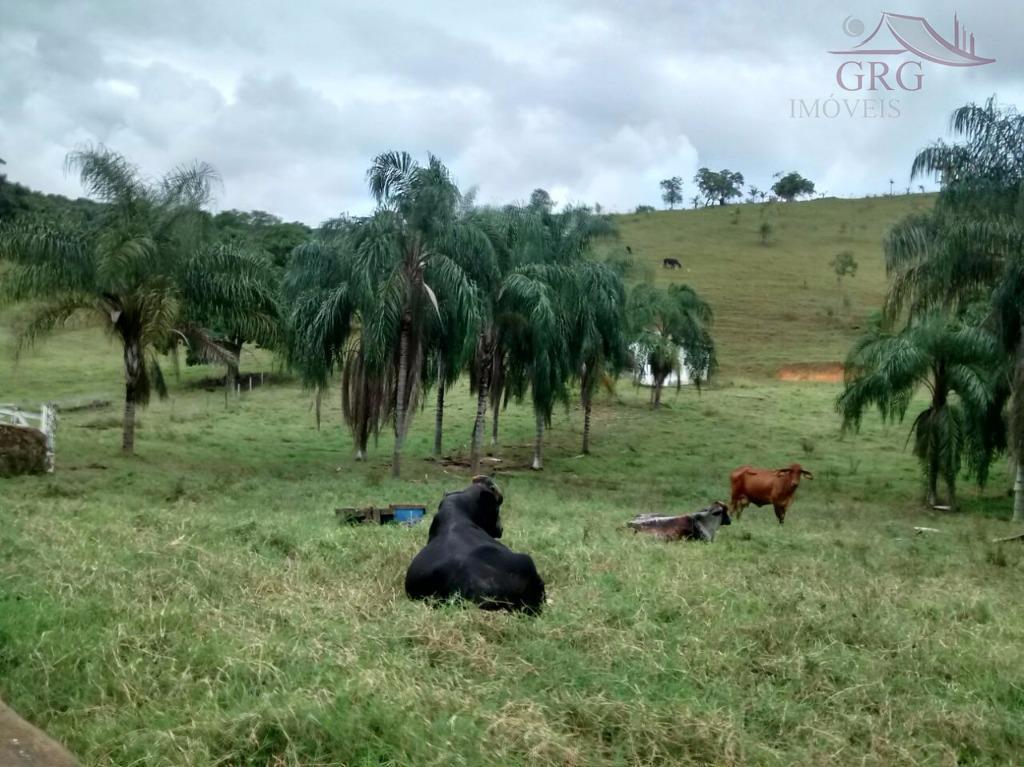 Sf:569 - 48 hectares, Papucaia-Cachoeiras de Macacu propriedade linda