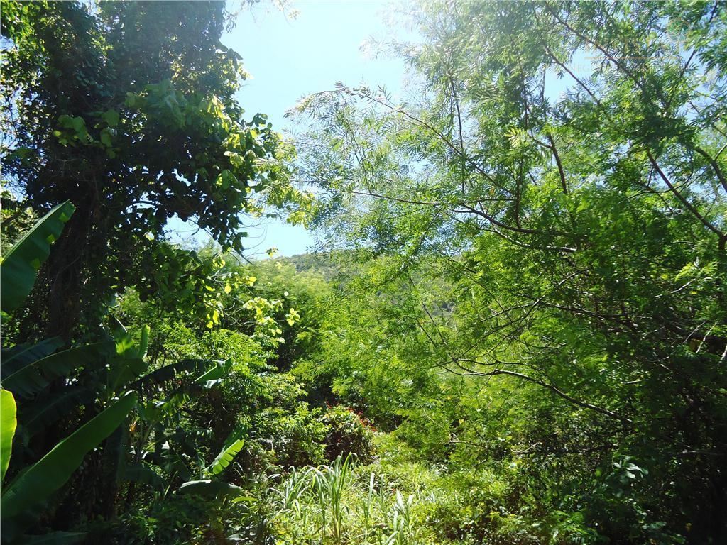 Terreno à venda em Ribeirão Da Ilha, Florianópolis - SC