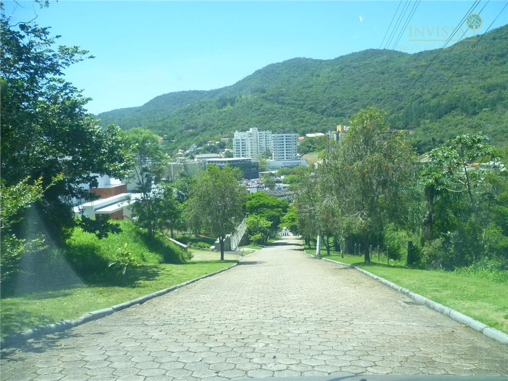 Terreno em Córrego Grande, Florianópolis - SC