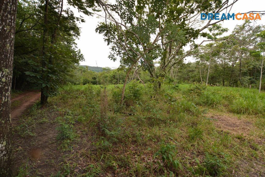 Chácara 3 Dorm, Zona Rural, Pirenópolis (CH0017) - Foto 4
