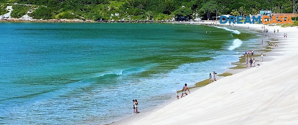 Terreno, Ingleses, Florianópolis (TE0319) - Foto 4