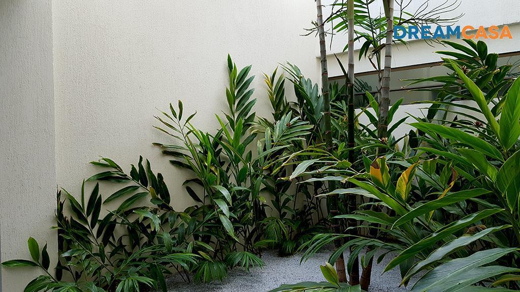 Sala, Espinheiro, Recife (SA0267) - Foto 5
