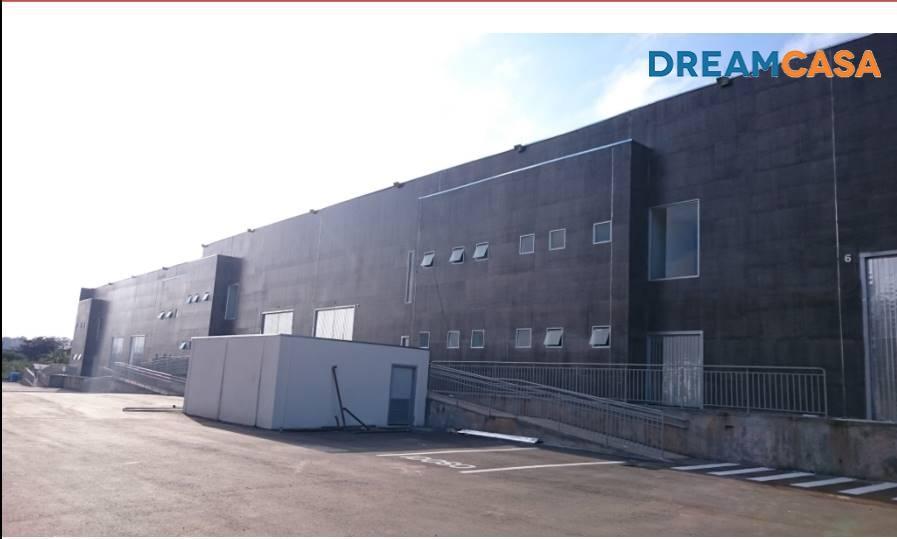 Rede Dreamcasa - Galpão, Cidade Industrial - Foto 4