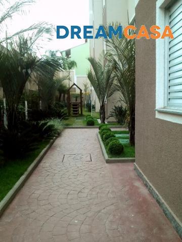 Rede Dreamcasa - Apto 2 Dorm, Parque São Vicente - Foto 2
