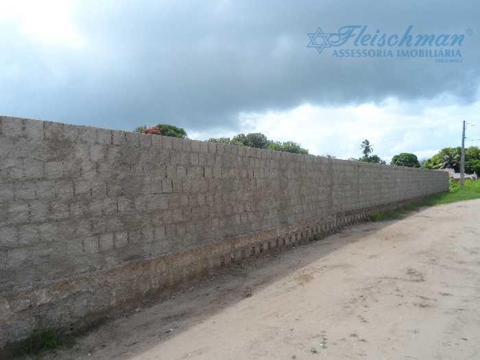 Muro frontal