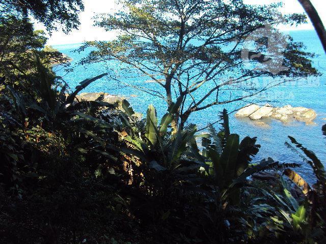 Belissima costeira no sul da Ilha com projeto aprovado