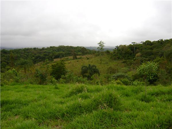 Área à venda em Tijuco Preto, Cotia - SP