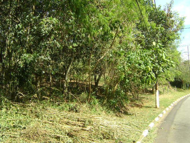 Terreno em Granja Viana, Cotia - SP