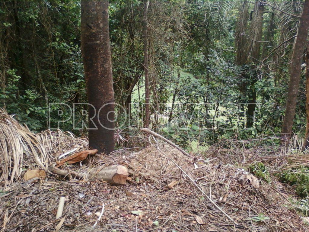 Terreno em Jardim Colibri, Embu Das Artes - SP