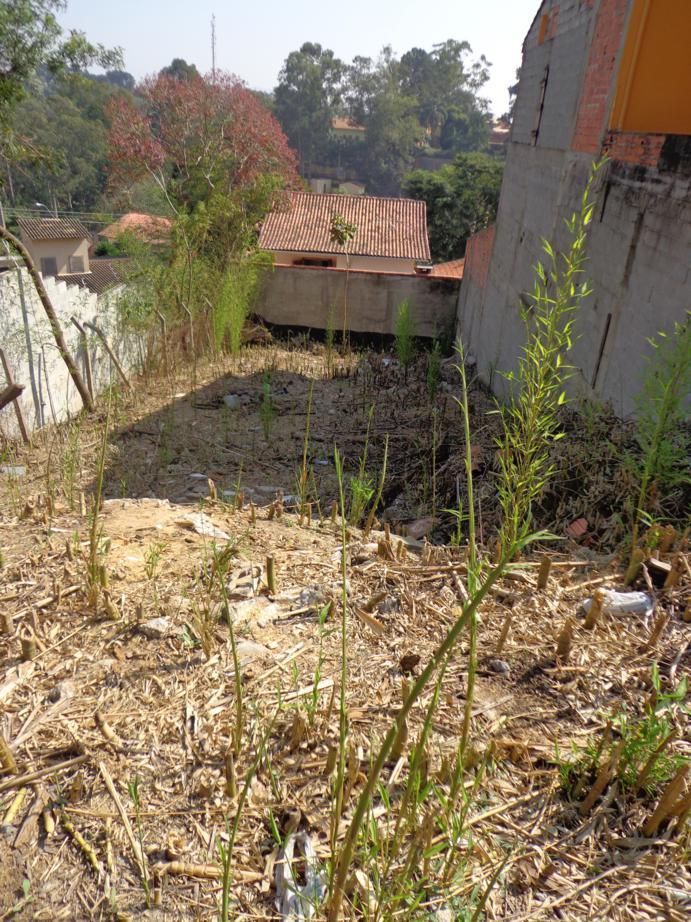 Terreno à venda em Vila Velha, Carapicuíba - SP