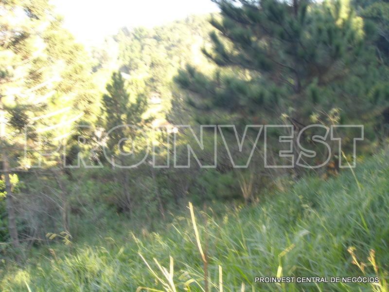 Área em Taboleiro Verde, Cotia - SP