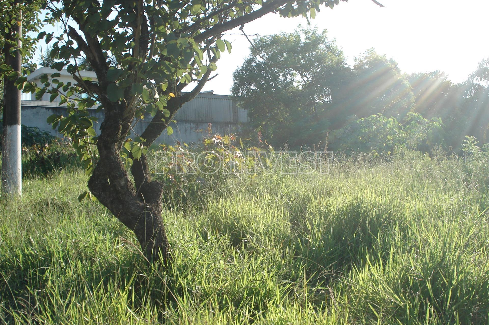 Terreno em Gramado, Cotia - SP