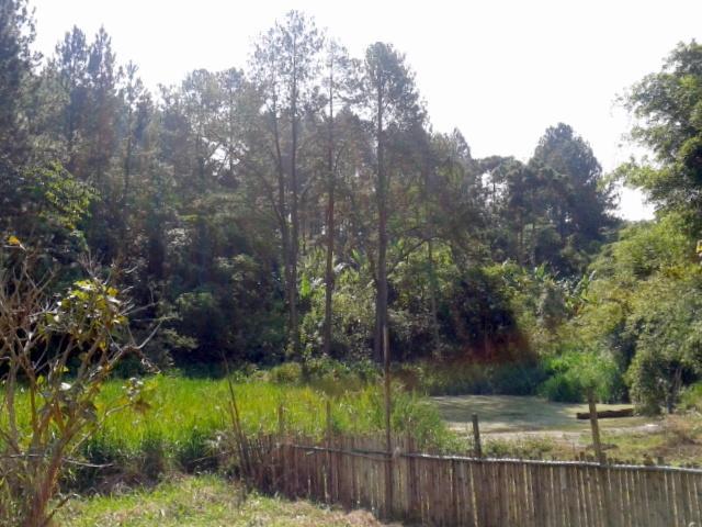 Área à venda em Jardim Petrópolis, Cotia - SP