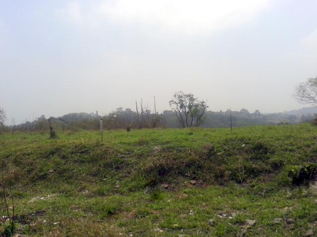 Terreno em Jardim Barbacena, Cotia - SP