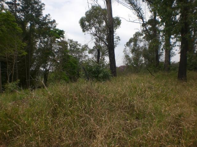 Terreno em Capuava, Cotia - SP