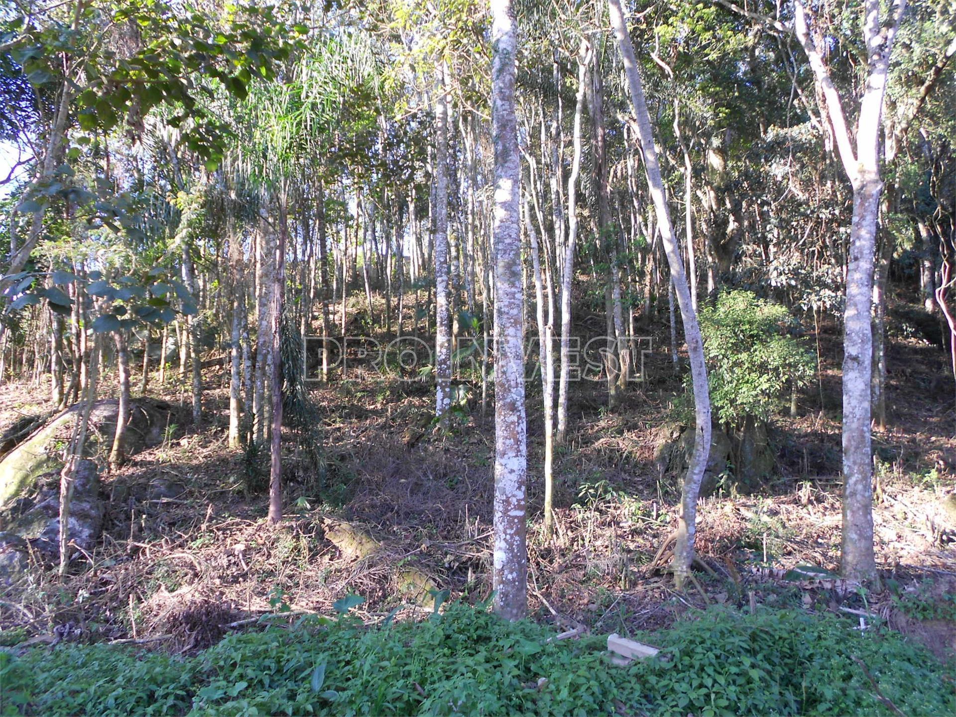 Terreno à venda em Jardim Santa Paula, Cotia - SP