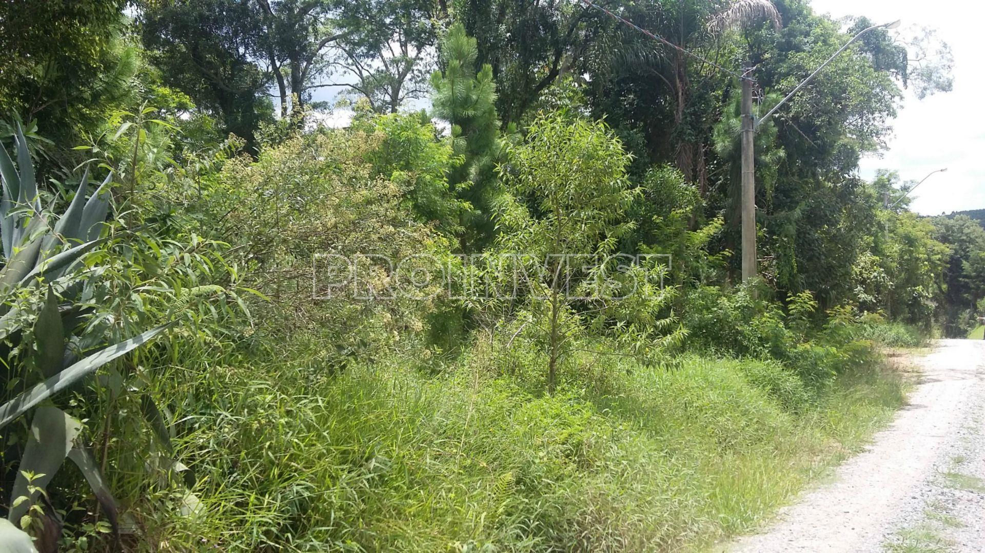 Terreno em Recanto Flora, São Roque - SP