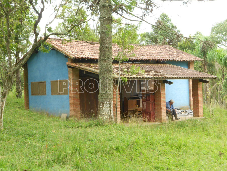 Chácara de 3 dormitórios à venda em Carmo Messias, Ibiúna - SP