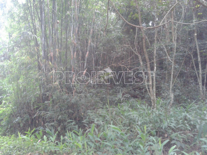 Área à venda em Parque Rincão, Cotia - SP