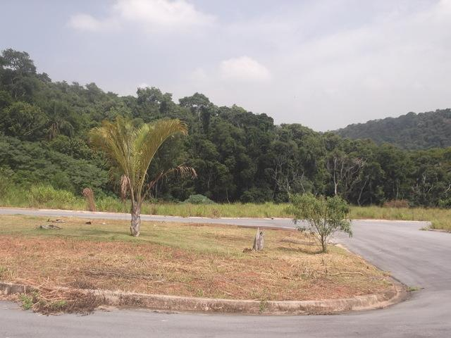 Terreno em Bella Vittà Vista Verde, Cotia - SP