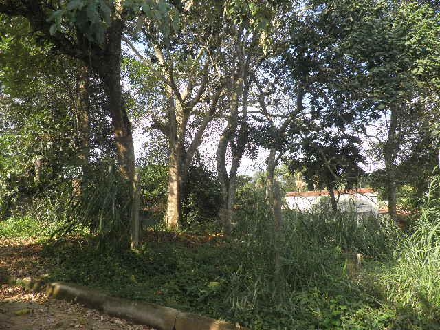 Terreno à venda em Chácara Rincão, Cotia - SP