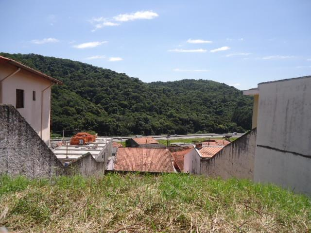 Terreno em Granja Carolina, Cotia - SP