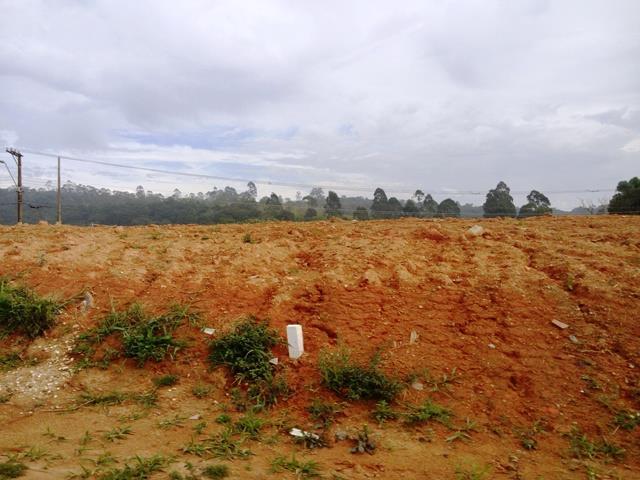 Terreno à venda em Residencial Palma De Maiorca, Cotia - SP