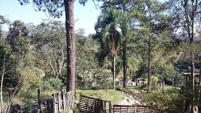 Área à venda em Jardim Nossa Senhora Das Graças, Cotia - SP