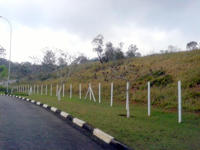Área em Capuava, Embu Das Artes - SP