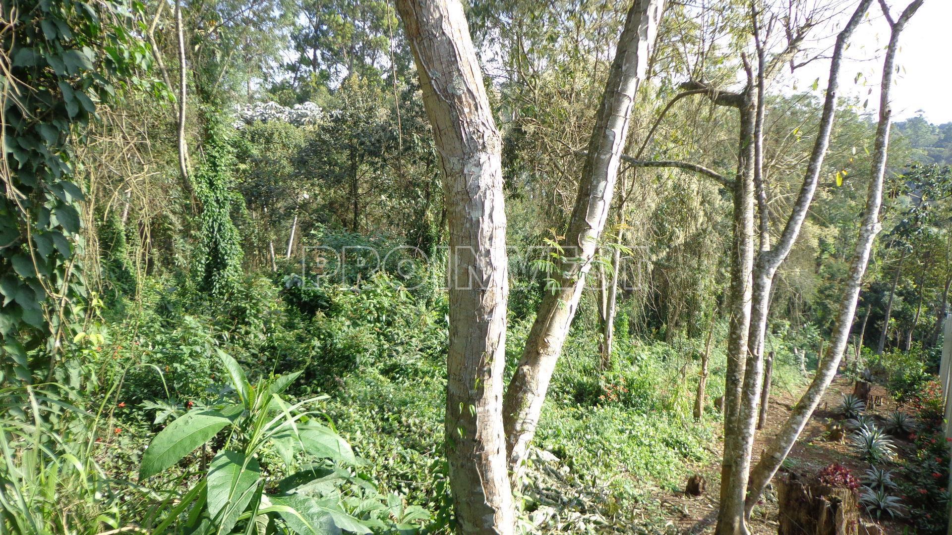 Terreno em Paisagem Renoir, Cotia - SP