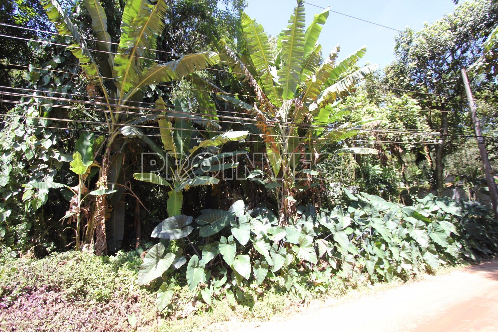 Terreno em Jardim Colibri, Cotia - SP