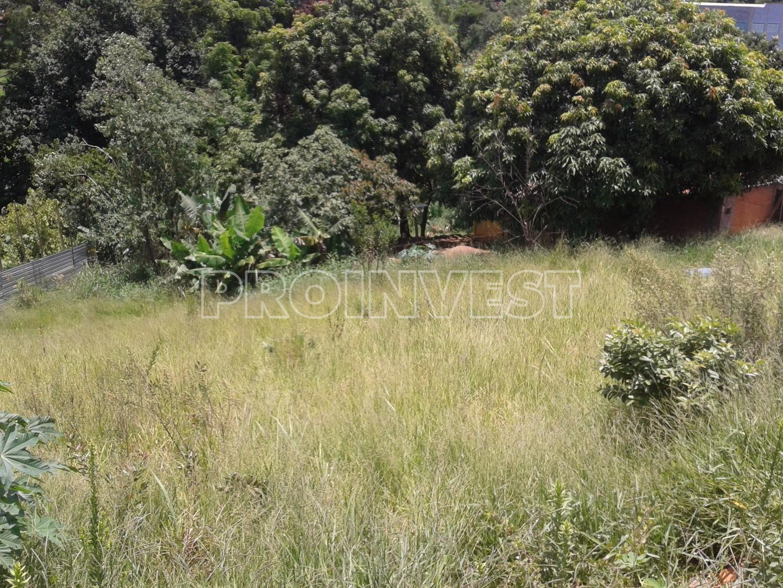 Terreno em Parque Rincão, Cotia - SP