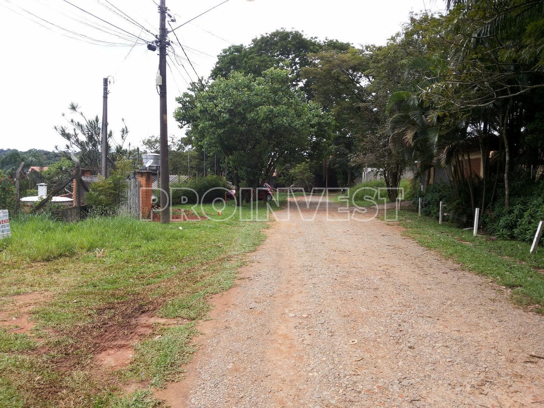 Terreno em Chácara Canta Galo, Cotia - SP