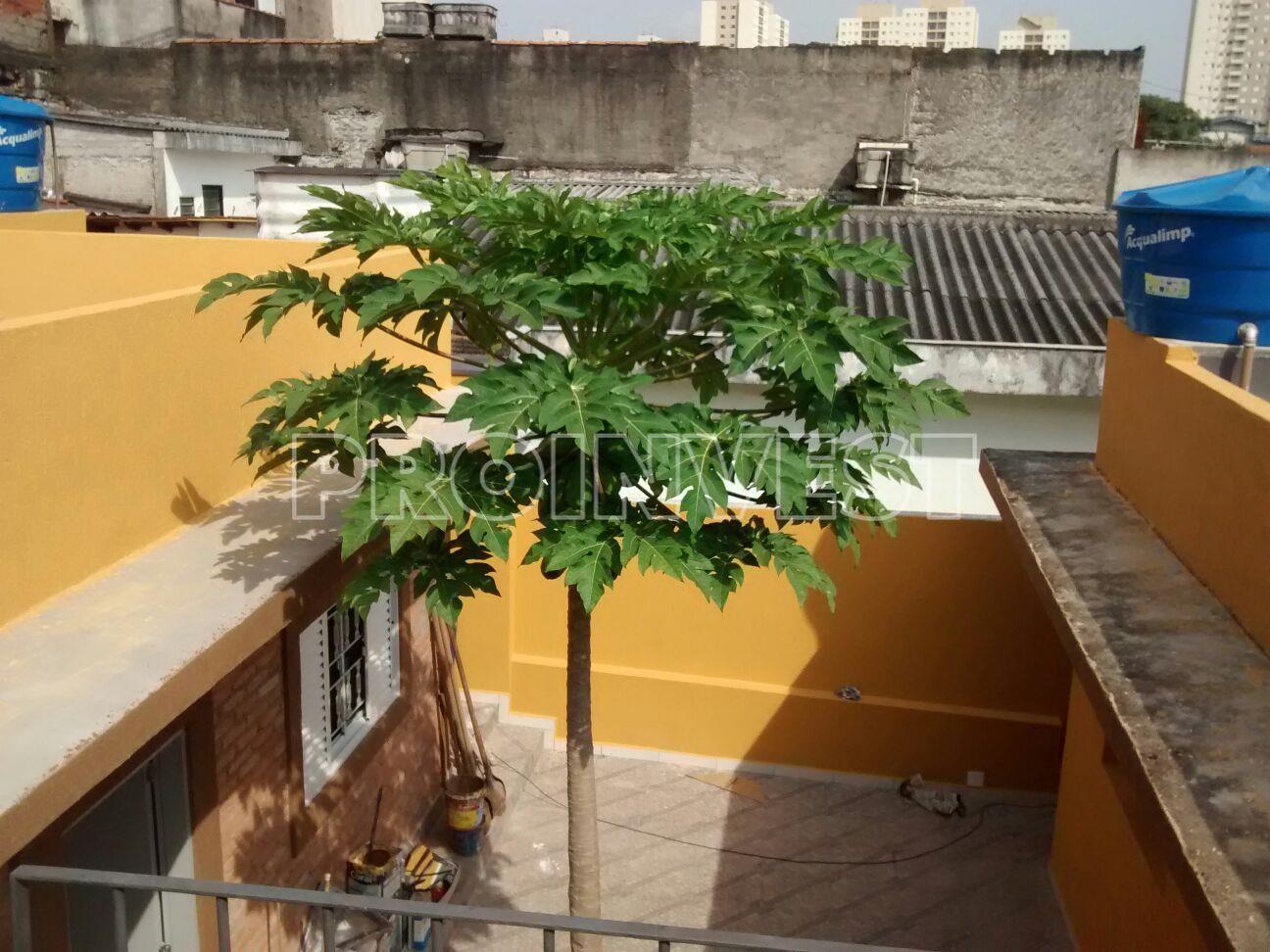 Casa de 2 dormitórios à venda em Rio Pequeno, São Paulo - SP