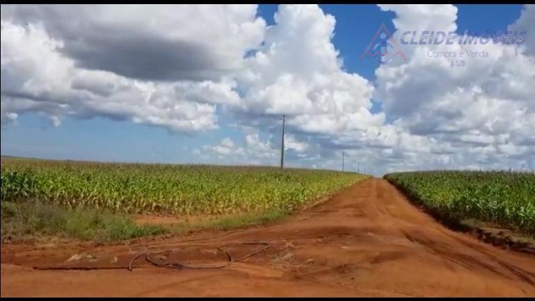 fazenda em nova mutum - mtessa terra está abaixo do preço de mercadoótima de logística e...