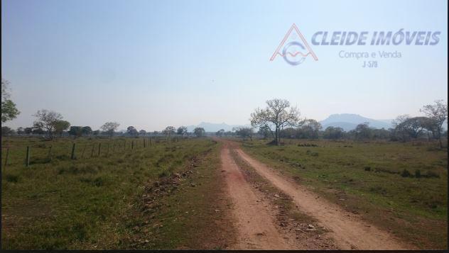 fazenda na regiao mimoso119 hectares -80% formados1 casa boa telefone ruralriu aos fundosapos mimoso 57 km...