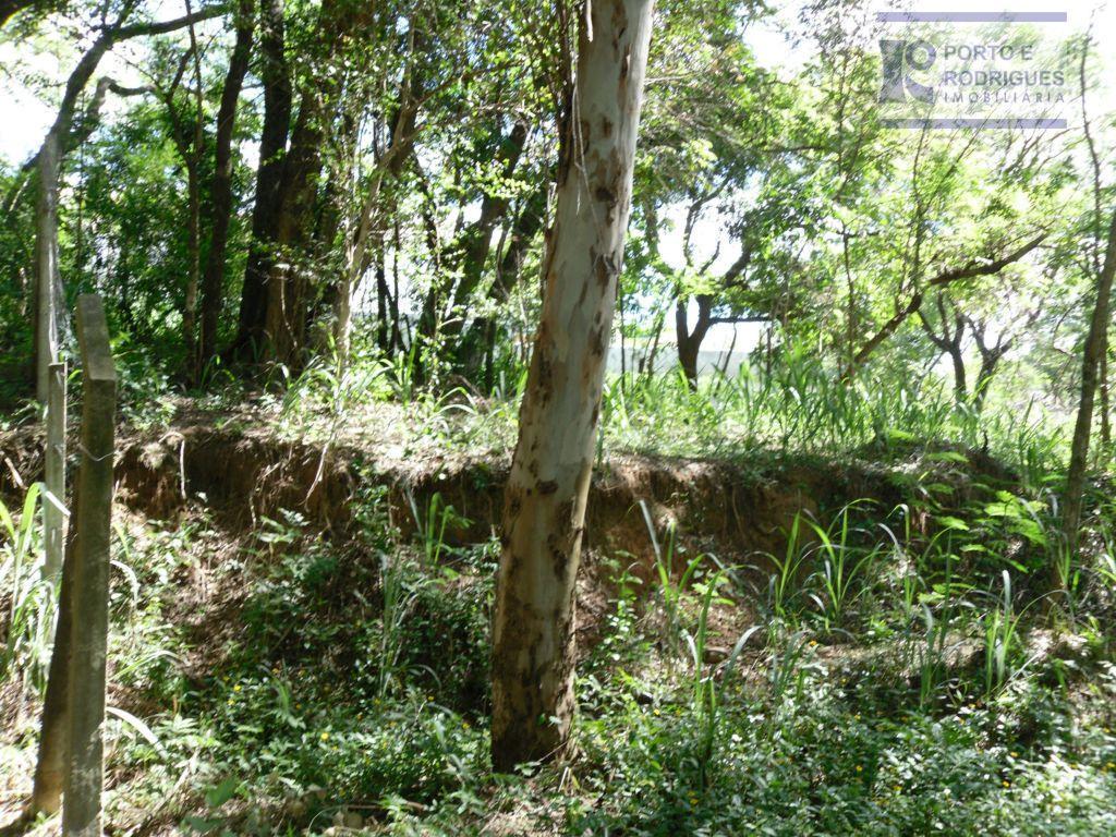 Terreno residencial à venda, Jardim das Palmeiras, Campinas.
