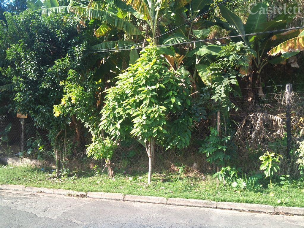 Terreno em Jardim Centenário, Campinas - SP
